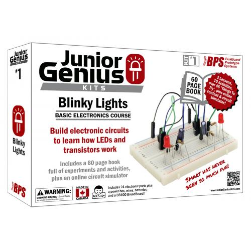Blinky Lights Basic Electronics Kit #1 - Free CDN Shipping Available!